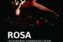 affiches ROSA_web